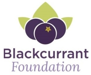 Blackcurrant Foundation Logo