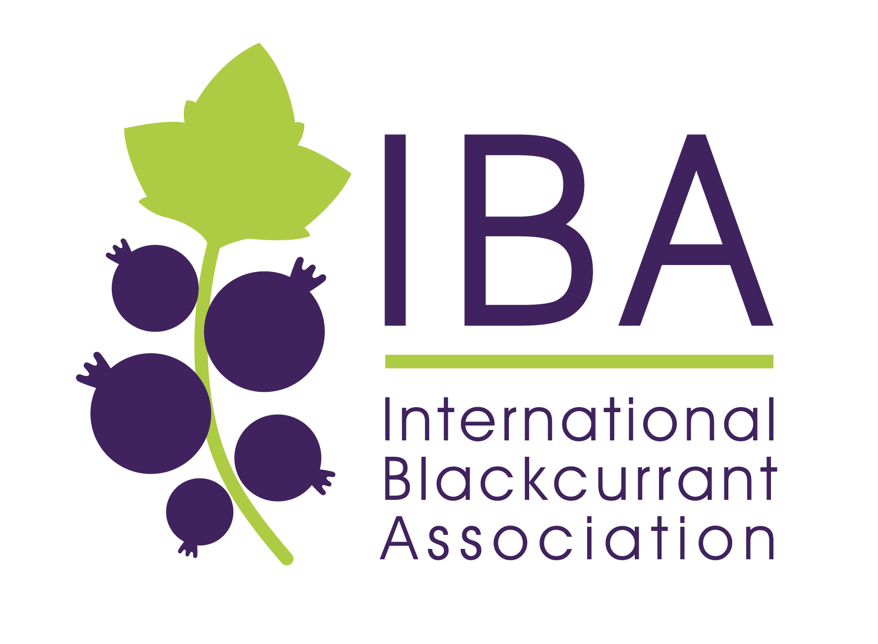 International Blackcurrant Association Logo