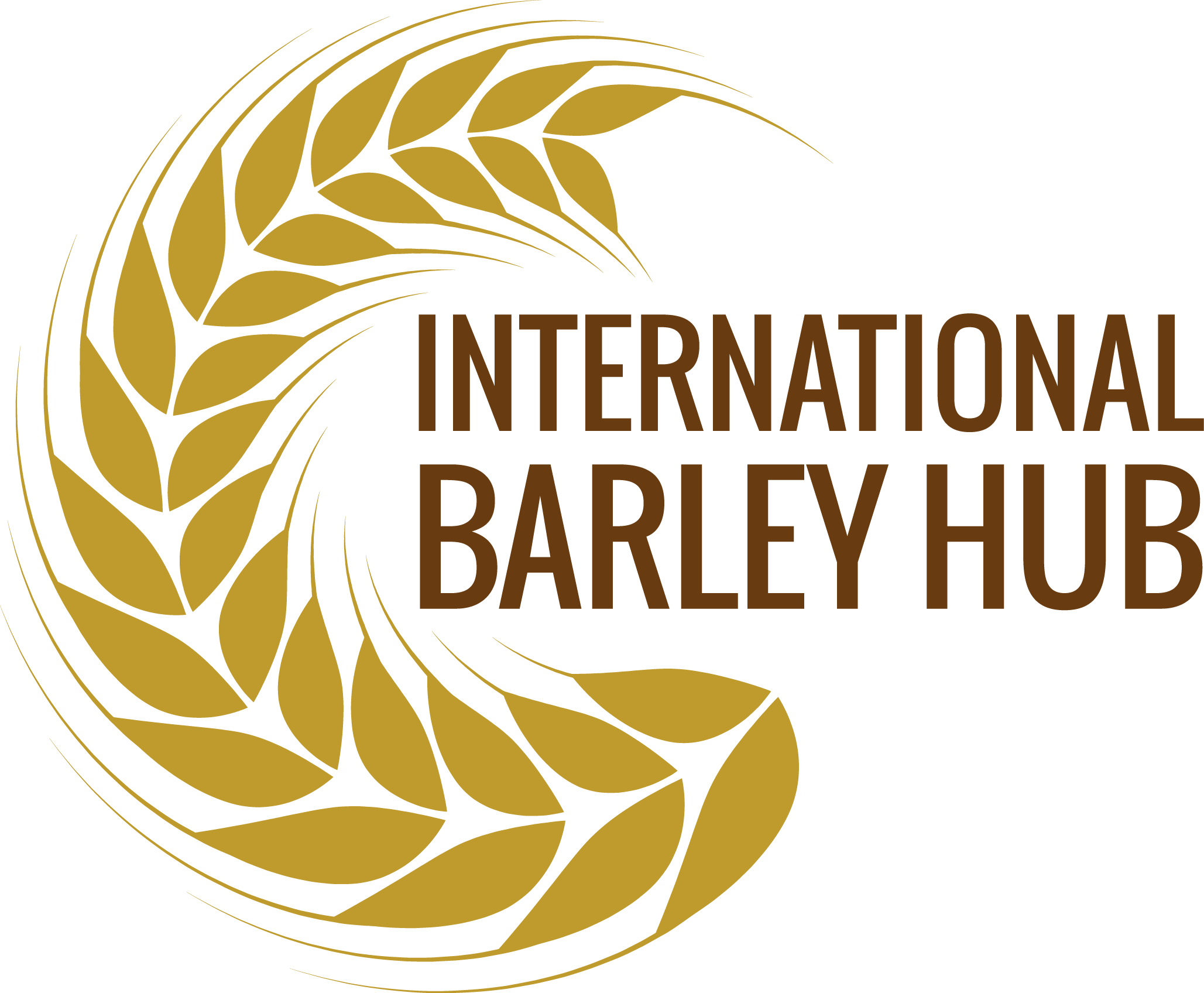 International Barley Hub