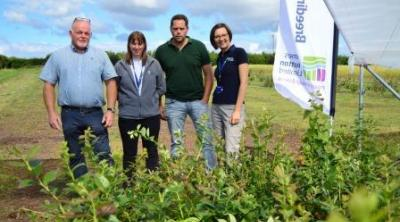 James Hutton Limited Blueberry Consortium Launch