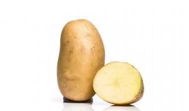 Lady Balfour potato